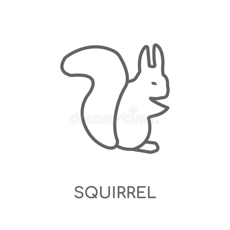 Icône linéaire d'écureuil Concept moderne de logo d'écureuil d'ensemble sur le wh illustration stock