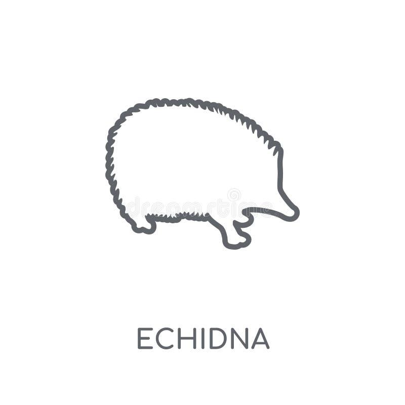 Icône linéaire d'Echidna Concept moderne de logo d'Echidna d'ensemble sur le petit morceau illustration de vecteur
