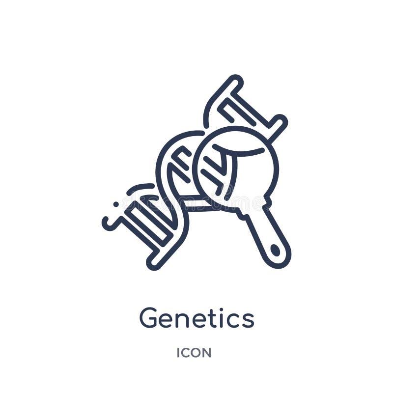 Icône linéaire de la génétique de la collection médicale d'ensemble Ligne mince icône de la génétique d'isolement sur le fond bla illustration stock