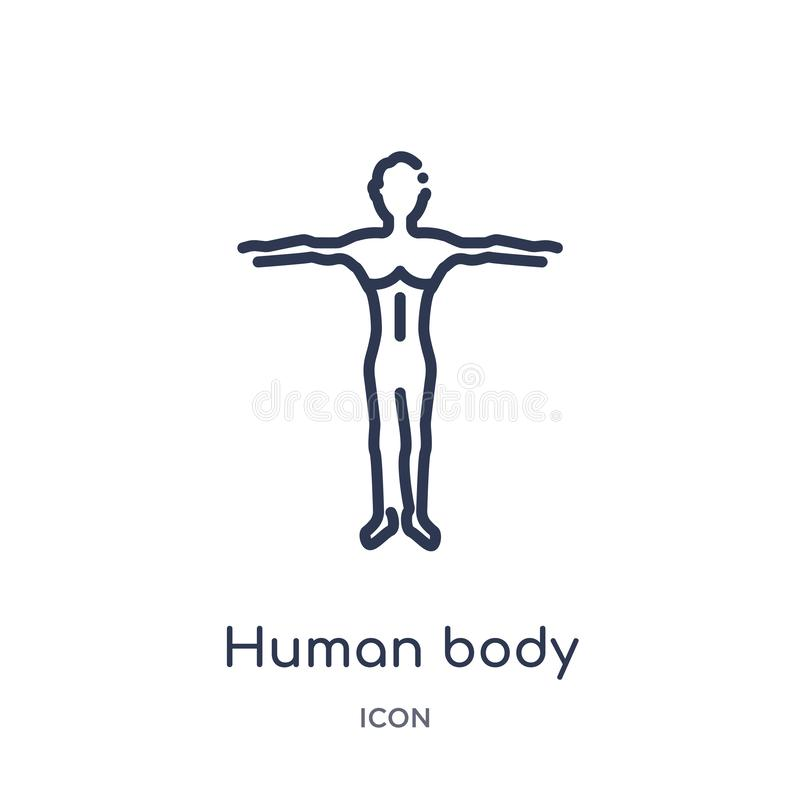 Icône linéaire de noir de position de corps humain de collection d'ensemble de pièces de corps humain Ligne mince corps humain te illustration libre de droits