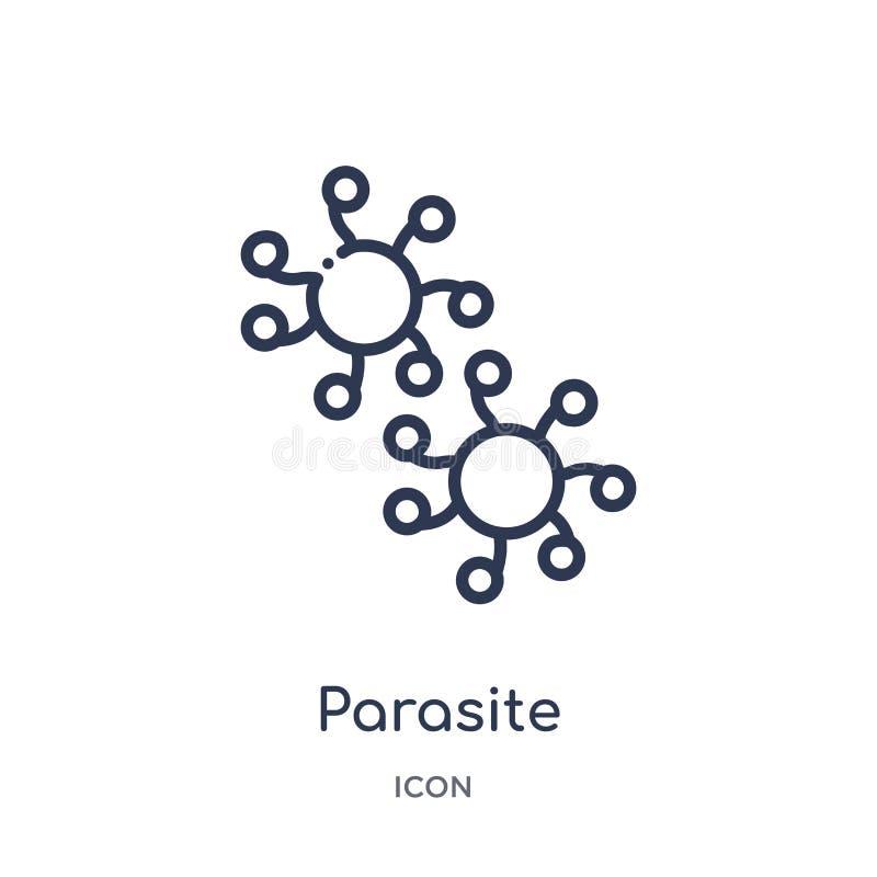 Icône linéaire de parasite de collection d'ensemble d'hygiène Ligne mince icône de parasite d'isolement sur le fond blanc parasit illustration de vecteur
