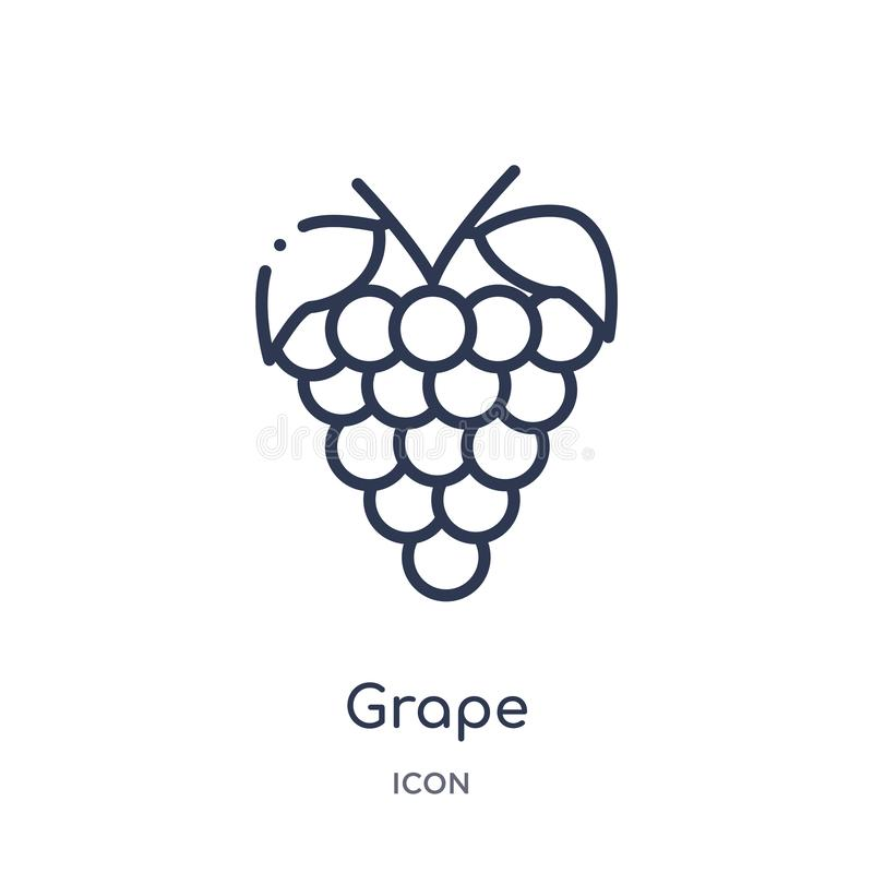 Icône linéaire de raisin de collection d'ensemble de fruits Ligne mince icône de raisin d'isolement sur le fond blanc illustratio illustration stock
