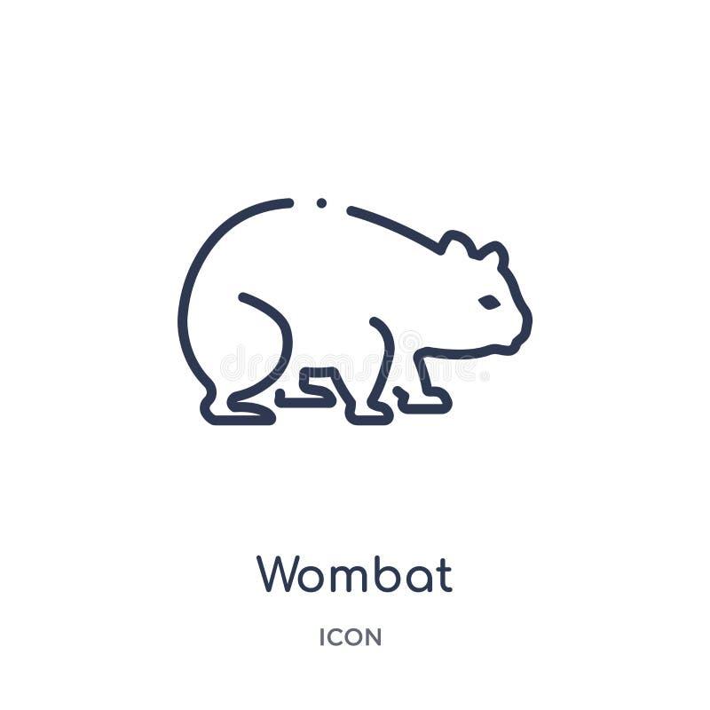Icône linéaire de wombat des animaux et de la collection d'ensemble de faune Ligne mince vecteur de wombat d'isolement sur le fon illustration stock