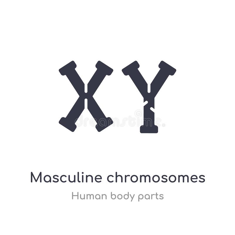 icône masculine d'ensemble de chromosomes ligne d'isolement illustration de vecteur de collection de pi?ces de corps humain r illustration libre de droits