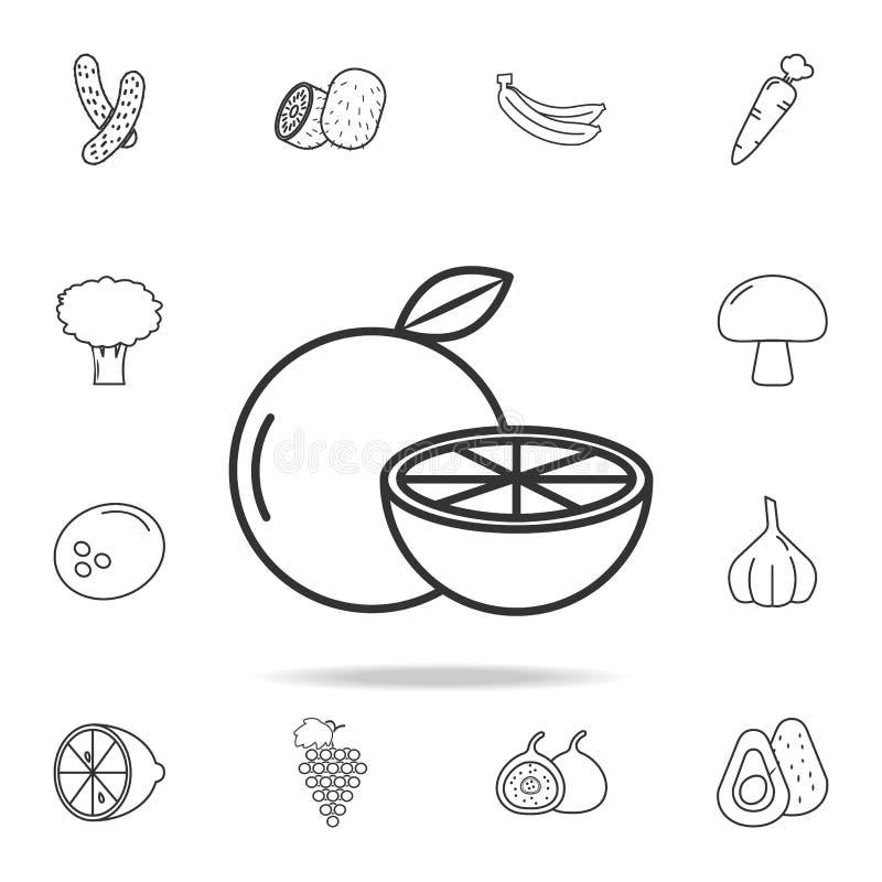Icône orange Ensemble d'icône de fruits et légumes Conception graphique de qualité de la meilleure qualité Signes, collection de  illustration de vecteur