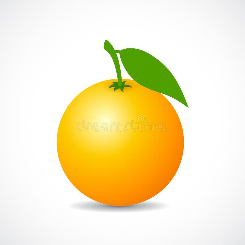 Icône orange mûre de vecteur illustration de vecteur