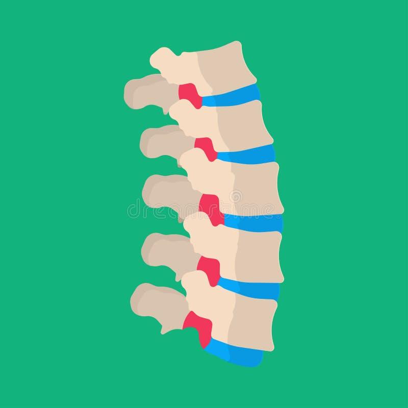 Icône patiente de vecteur de vertèbres de maladie lombaire humaine de mal de dos Disque malade squelettique de colonne d'épine do illustration stock