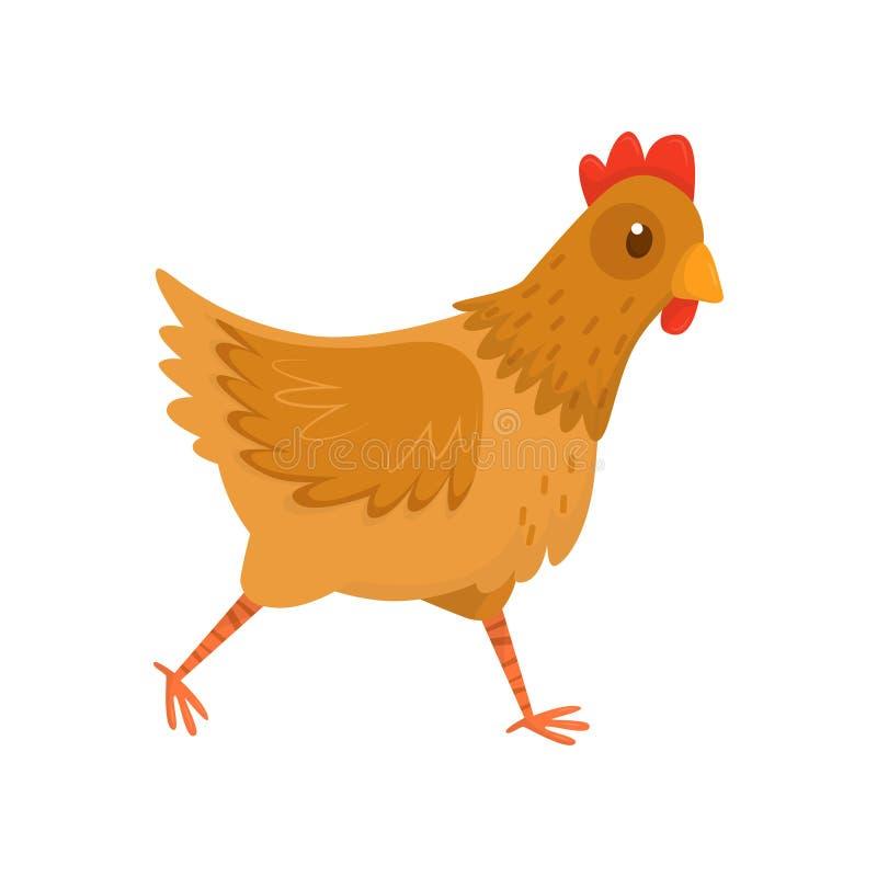Icône plate de vecteur de poule courante Poulet avec les plumes brunes et feston rouge Oiseau de ferme Volaille domestique illustration libre de droits