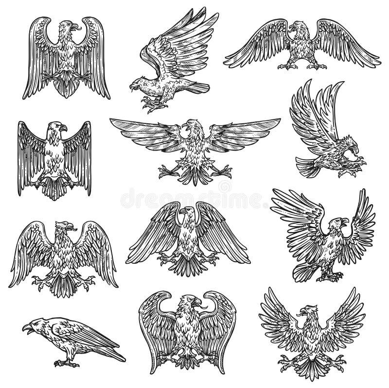 Icônes gothiques de faucon d'aigle de croquis héraldique illustration de vecteur