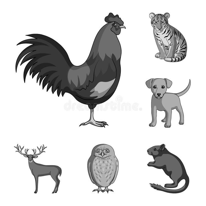 Icônes monochromes d'animaux réalistes dans la collection d'ensemble pour la conception Les animaux sauvages et domestiques dirig illustration libre de droits