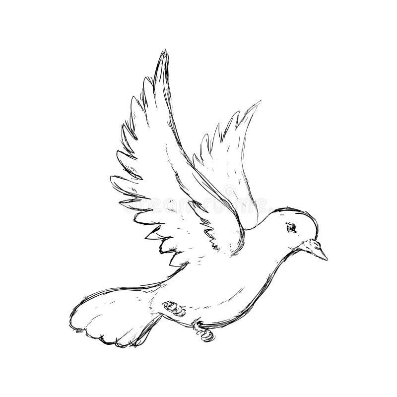 Ic ne de colombe conception d 39 oiseau et de paix dessin de - Dessin d oiseau ...