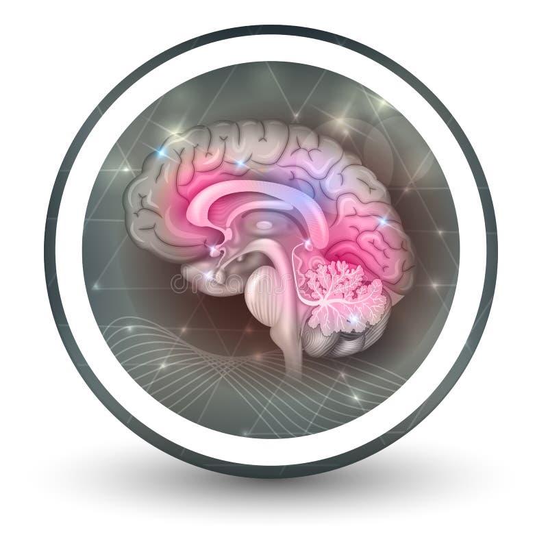 Icône de forme ronde de cerveau illustration stock