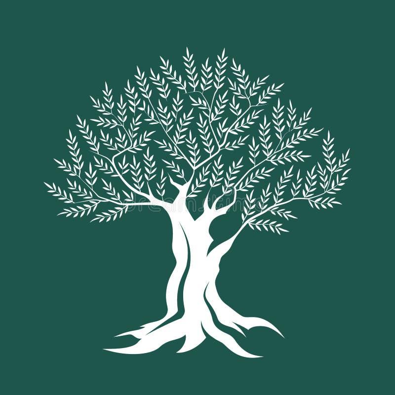Icône de silhouette d'olivier d'isolement sur le fond vert illustration de vecteur
