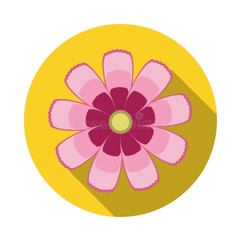 Icône plate de fleur de cosmos avec l'ombre photo stock