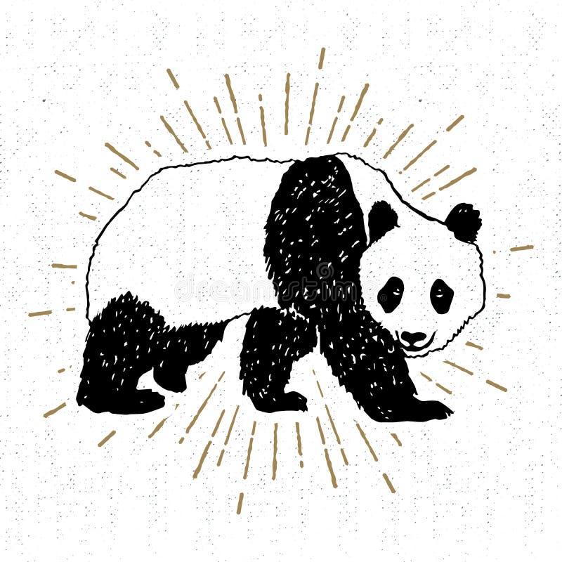 Icône tirée par la main avec l'illustration texturisée de vecteur de panda illustration stock