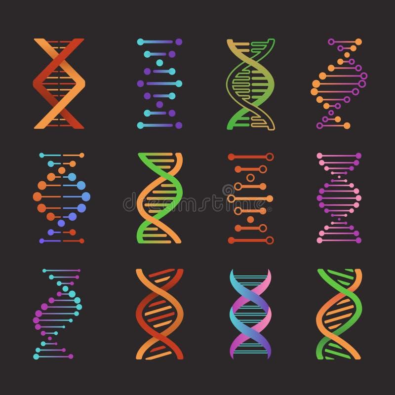 Ic?nes d'ADN Symboles de double h?lice de laboratoire de recherche en mati?re de biochimie, pictogrammes mod?les de g?ne Vecteur  illustration stock