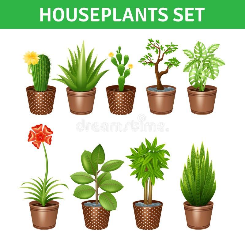 Icônes réalistes de plantes d'intérieur réglées illustration stock