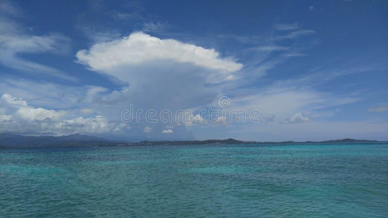 Icacopflaumenstrand Puerto Rico stockfoto