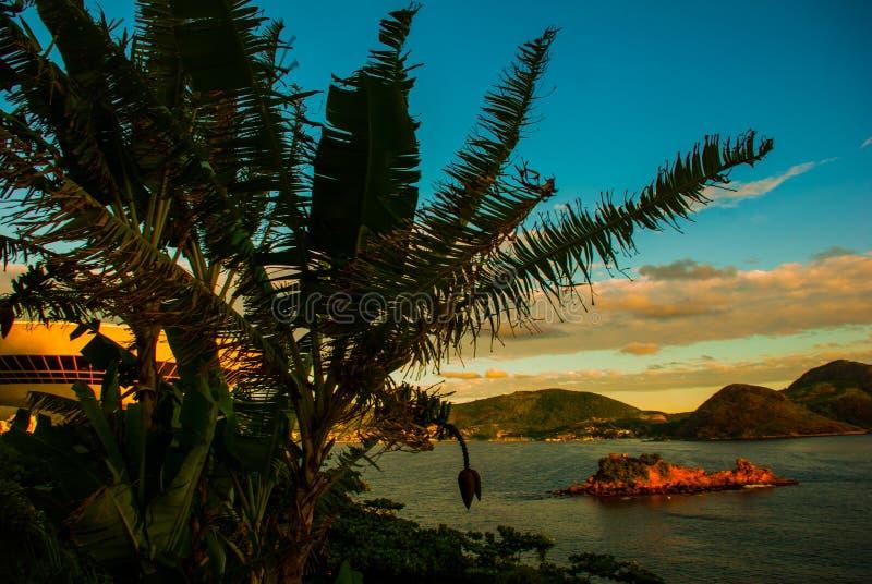 Icarai海滩和邻里,尼泰罗伊,里约热内卢,巴西状态  库存图片