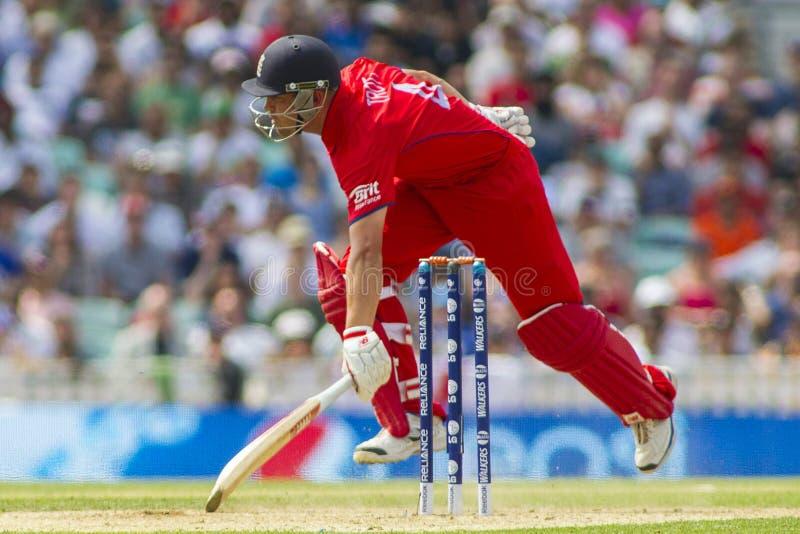 ICC trophée Angleterre semi finale v Afrique du Sud de champions photos libres de droits