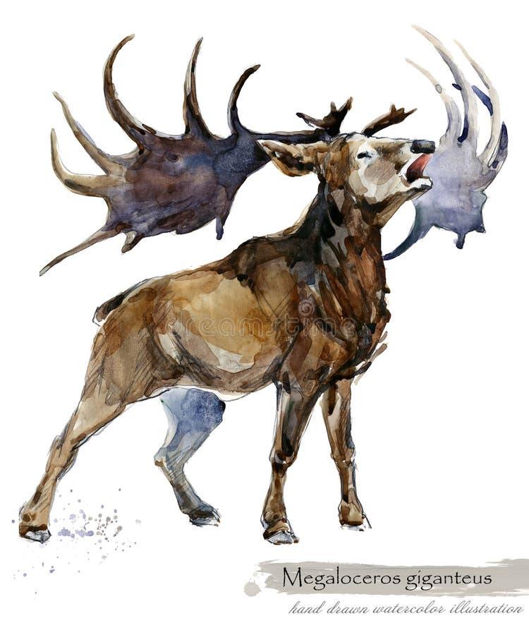 Ice Age wildlife. prehistoric period fauna. Megaloceros giganteus. Hand drawn watercolor animal vector illustration