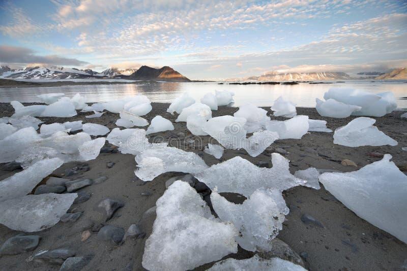 Ice on the Arctic beach - Spitsbergen, Svalbard