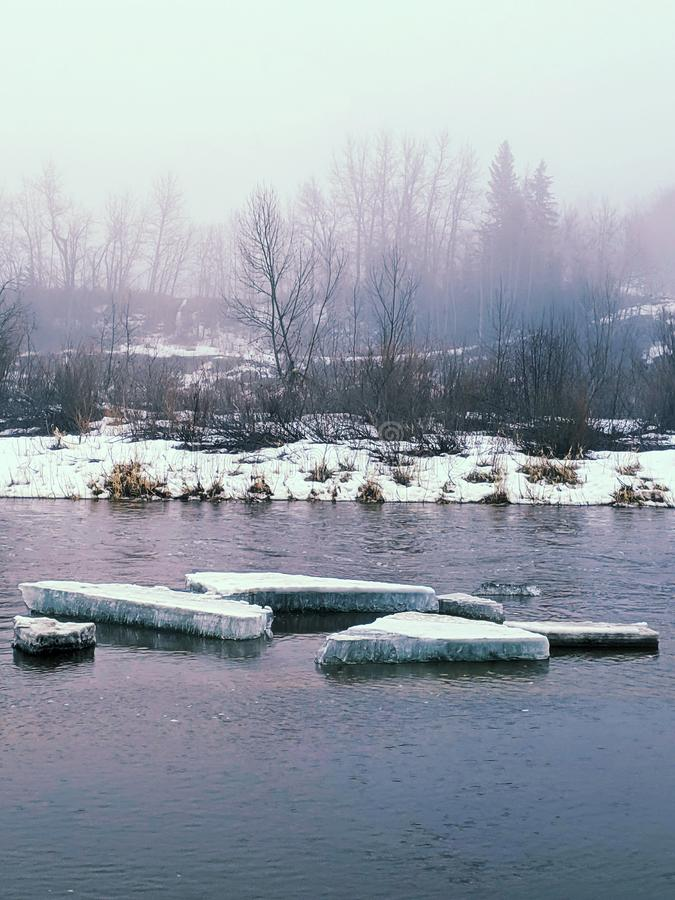 Ice chunks on the river royalty free stock photo