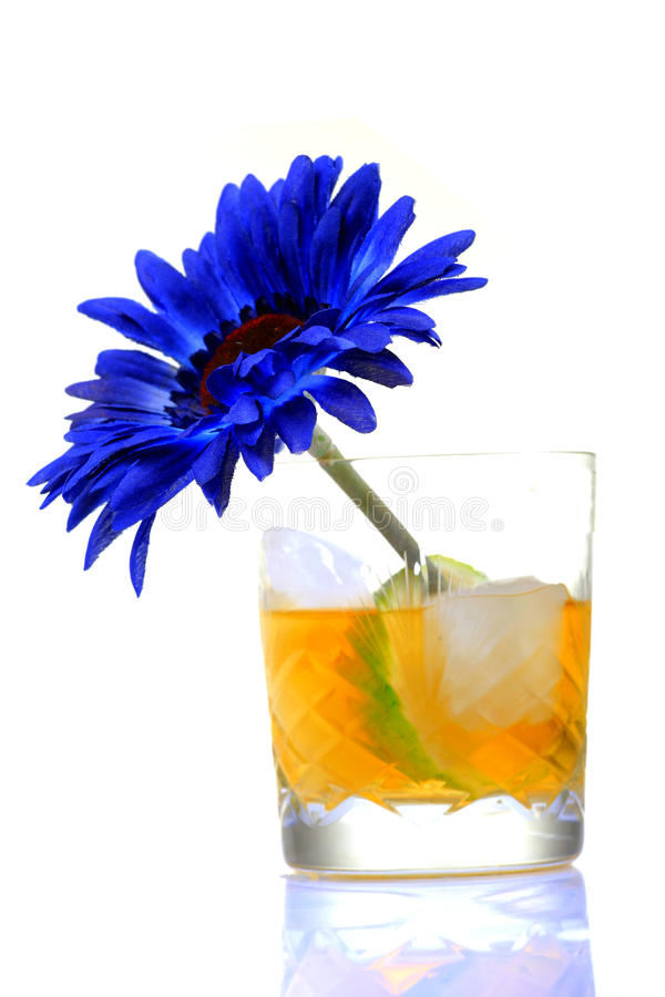 Ice cold whisky glass. With gerbera flower isolated on white background stock image