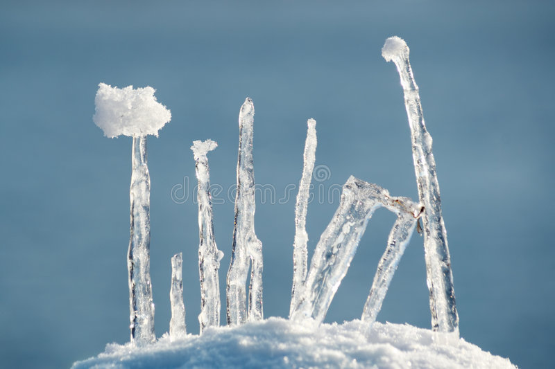 Ice composition. Composition made of Ice and Snow royalty free stock photos