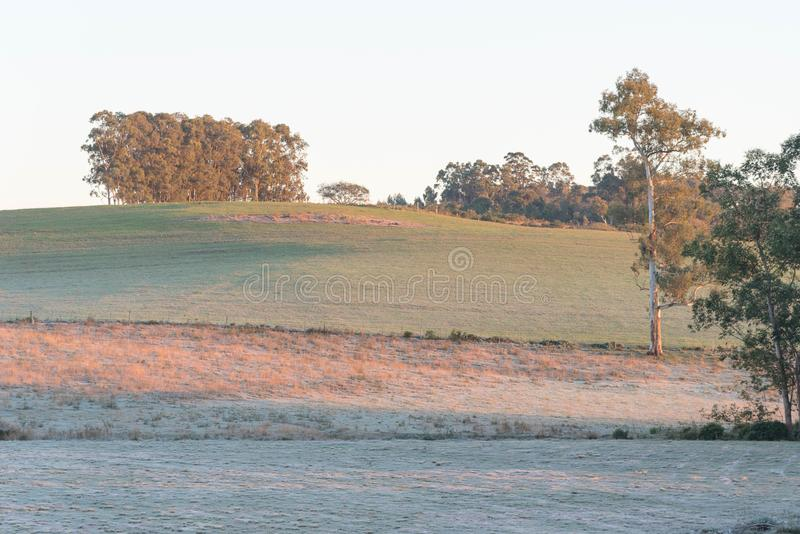 Ice-covered fields and frost stock photos