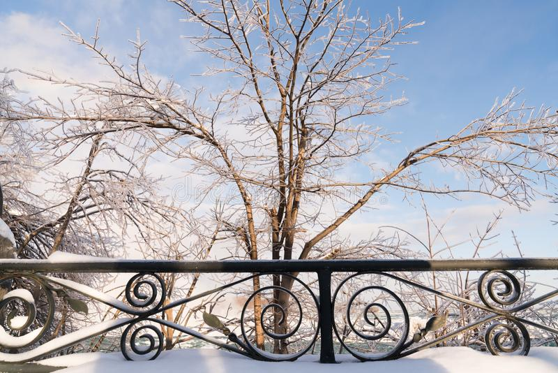 Ice-covered trees at Niagara Falls, Canada in winter royalty free stock image