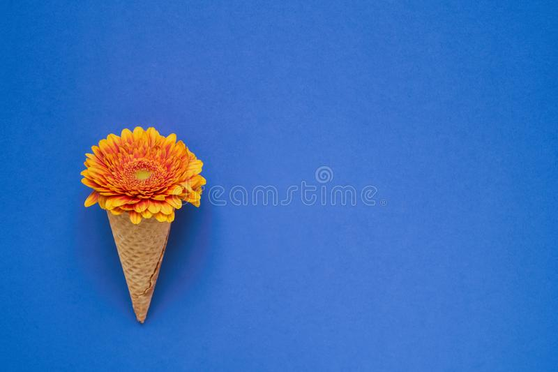 Ice cream cone with yellow gerbera flower on blue background. Copy space, top view royalty free stock photos