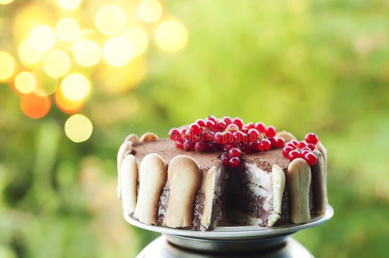 Ice cream tiramisu cake with cranberries stock image