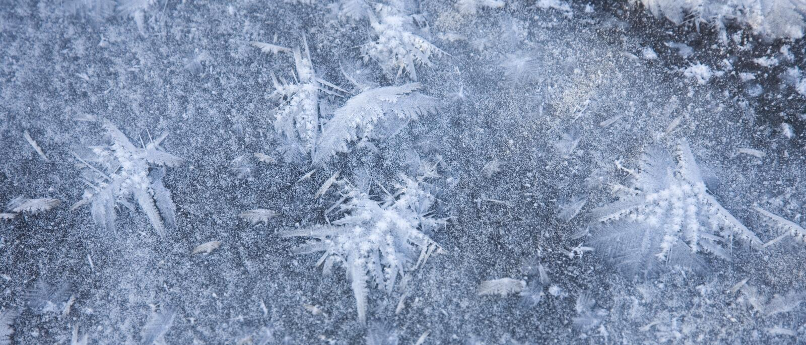 Ice Crystals Resembling Butterflies Royalty Free Stock Image
