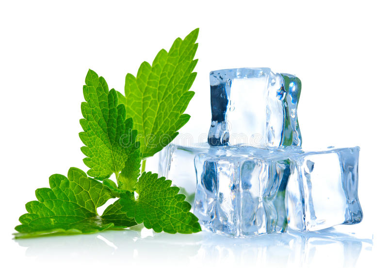 Ice cube with leaf of melissa stock photography