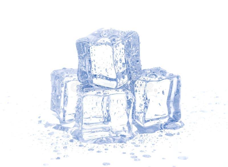 Ice cubes isolated on white royalty free stock image
