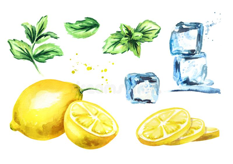 Ice cubes, lemon and mint leaves isolated on white background set. Watercolor hand drawn illustration royalty free illustration