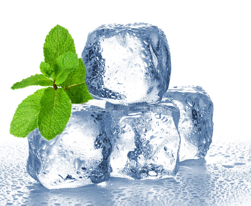 Ice cubes and mint royalty free stock photo