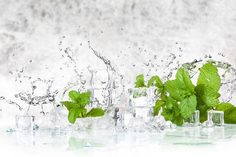 Ice cubes and mint leaves stock image