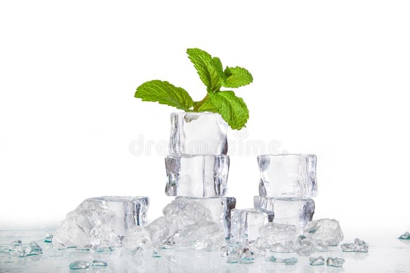 Ice cubes and mint leaves stock images