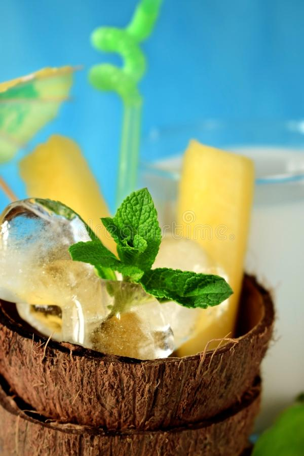 Ingredients for a tropical cocktail on blue background stock images