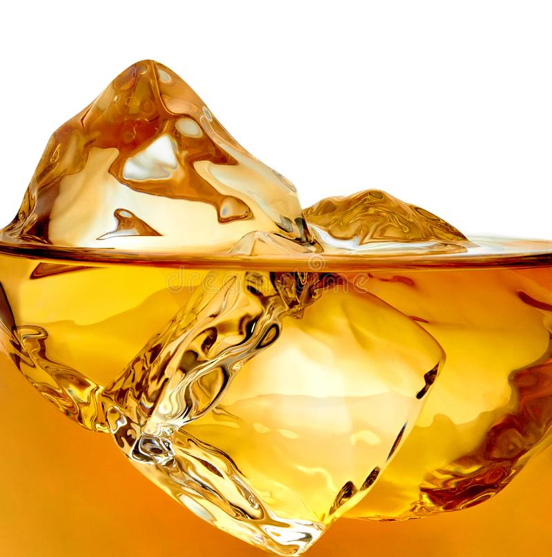 Ice cubes in whisky. Or whiskey isolated on white background stock photography