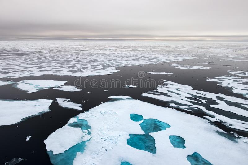 Ice edge at 82 41.01 degrees North from Svalbard royalty free stock images