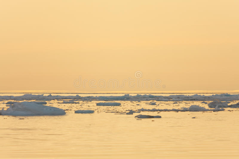 Ice Floating in Calm Sea royalty free stock images