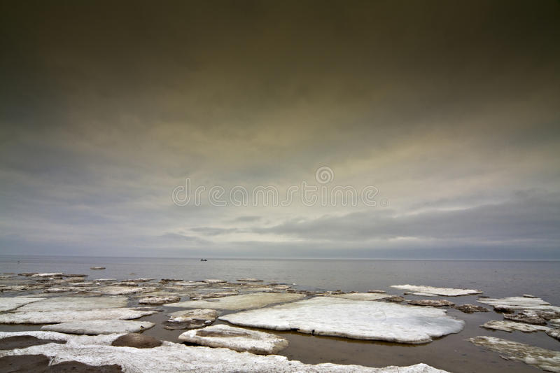 Download Ice floe in the sea. stock photo. Image of baltic, cold - 19480826