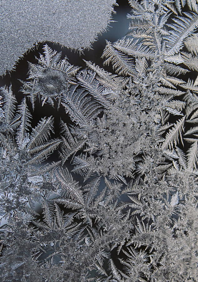 Ice flowers - frost pattern. Window frost (also called fern frost or ice flowers) forms when a glass pane is exposed to very cold air on the outside and stock photo