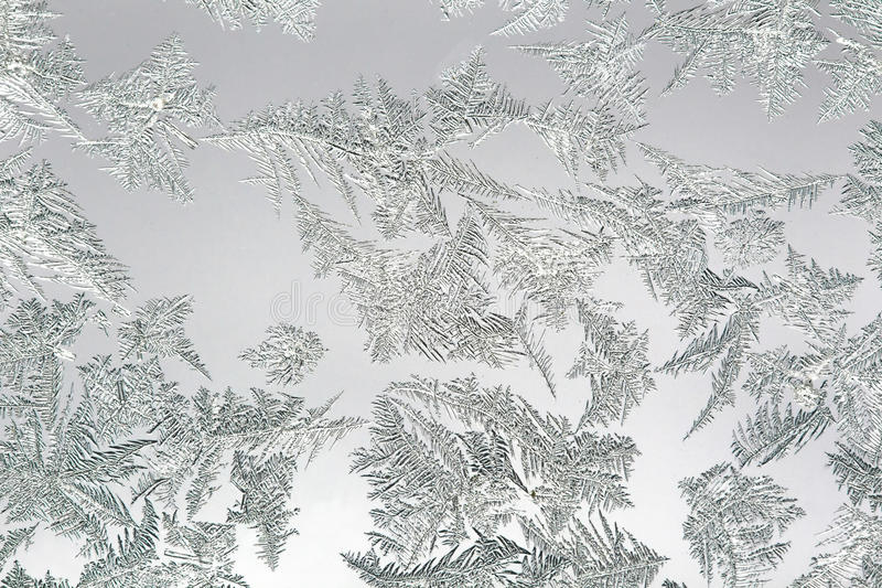Ice flowers on a frozen window. Ice flowers,snow flowers on a frozen window into the daylight royalty free stock photos