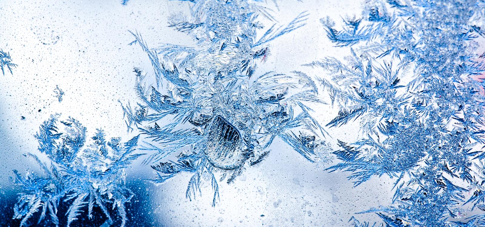 Download Ice flowers on window stock photo. Image of texture, background - 21271810