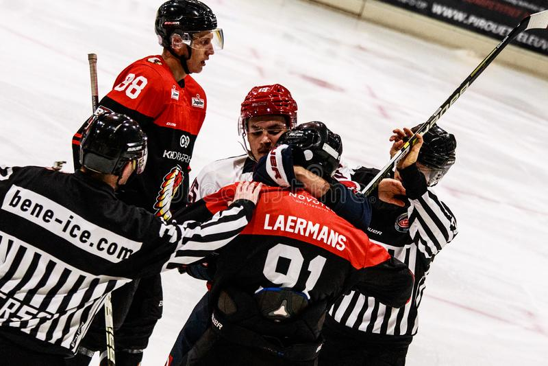 Ice hockey BeNe League. Leuven, October 7th 2019.  Ice hockey BeNe League Belgian Elite League:  Chiefs Leuven vs Liege Bulldogs. Liege Bulldogs win with a stock image