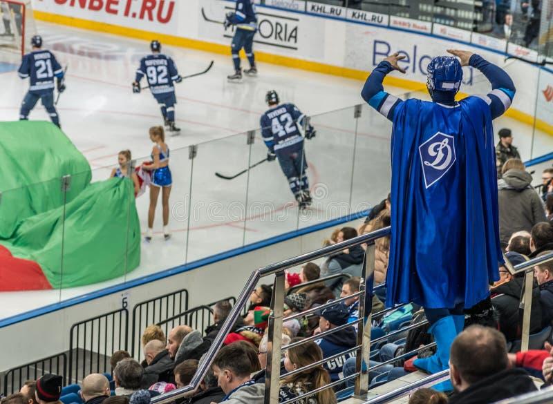 Ice hockey fan wearing special uniform stock photography